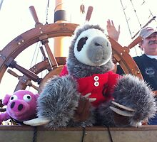 Pig, Sloth, and Captain by Katherine Pogue