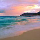 Tortola Seascape  by Roupen  Baker