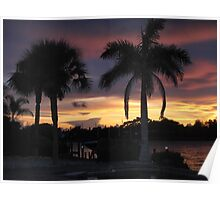 Two palms at sunset Poster