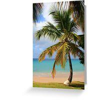 Caribbean Palm Greeting Card