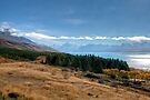 Lake Pukaki and Mount Cook from Peters Lookout by Christine Smith