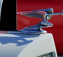 1937 Packard Touring Hood Ornament by Jill Reger