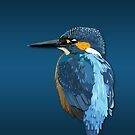 Kingfisher by jash
