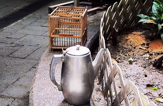 Teapot and Birdcage © by Ethna Gillespie