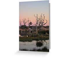 Mungerannie Wetlands at Dusk 2 Greeting Card