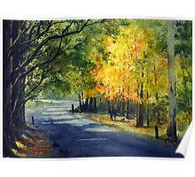 Mount Wilson in Autumn, Blue Mountains, Australia Poster