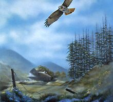 Redtail Sky by Chris J Worden Gregg