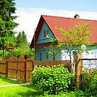 Cornflower Blue Dacha of Kartashevskaya by M-EK