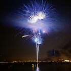 July 4th in LA by ArtfulWestCoast