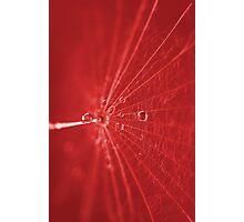 Abstrakt Rot Photographic Print