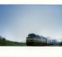 a train in alaska. by Stephanie Welling
