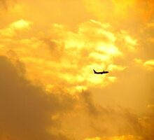 Golden flight, New York City  by Alberto  DeJesus