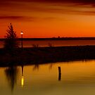 The Tree and the Lamp Post at Sunset - Aylmer Marina by Yannik Hay