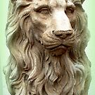 Stone Lion by ©The Creative Minds