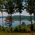 Arkansas Panorama. One Amazing Place by Roschetzky
