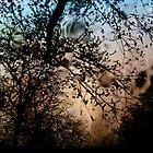 The Lords of Twilight III by gjameswyrick