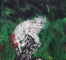 Canadian Lynx Kitten by silentsunlight