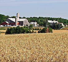Fields of Plenty by jules572