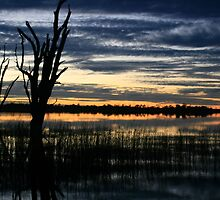 Early morning, Lake Bonney, Barmera,S.A. by elphonline
