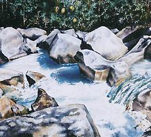 Far North Queensland, Babinda Boulders by didielicious