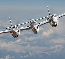 P-38 Lightning  by warbirds