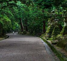 Path of the Shrines by Sue  Cullumber