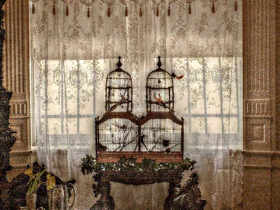 Victorian Bird Cages, Lambert Castle by Jane Neill-Hancock