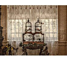 Victorian Bird Cages and Lace Curtians Photographic Print