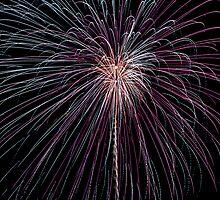 Fireworks! by Matthew Hutzell