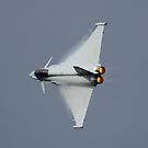 Eurofighter Typhoon  by PhilEAF92