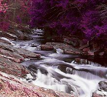 La riviere rouge by Nicholas Butler