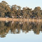 Barmera Caravan Park from Lake Bonney,Barmera,S.A. by elphonline