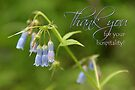 Thank You for Your Hospitality - Card by Tracy Friesen