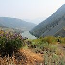 Fraser Canyon by Tracy Friesen