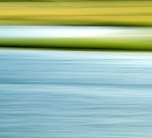 Summer Marsh - Abstract Photograph by Doug Hockman