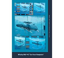 """Whaling Wall #42  """"East Coast Humpbacks"""" - Original Painting by Wyland Photographic Print"""