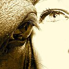 Eye to eye. by Hyaptia42