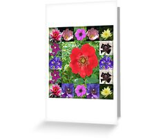 Essex Flowers Collage featuring Dreamy Wild Roses Greeting Card