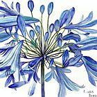 Agapanthus Flower by Esmee van Breugel