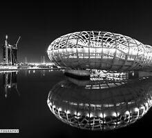 Mirror reflection  by Candelaphotos