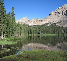 Summer in the Rockies by Eric Glaser