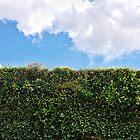 Green wall by AltheeaAdebisy