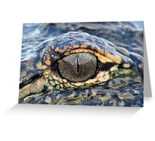 The eye of the gator ! Greeting Card