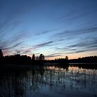Lake in the night by Tommi Rautio