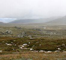 The Snowy River from the Mt Kosciusko Walk by Timothy John Keegan