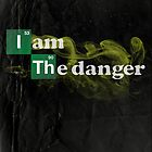 Danger is My Middle Name by fishbiscuit