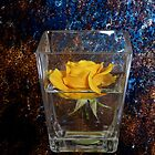Yellow Rose in Glass by RichardsPC
