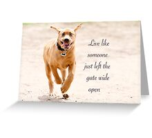 Live like someone left the gate wide open Greeting Card