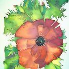 Poppy flower by Alena  Samsonov