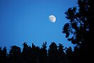 Moonrise On Mt. Baldy by Ron Hannah